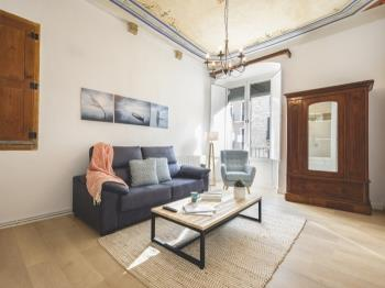 Unique and spacious Apartment on Placa del Vi